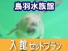 速旅【はやたび】鳥羽水族館ドライブプラン